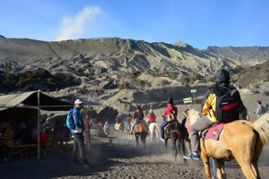 Open Trip Ke Bromo Murah